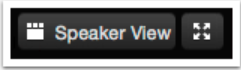 speaker view button